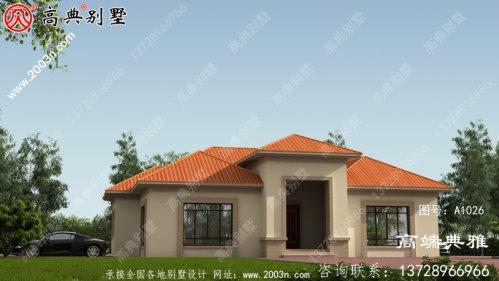 占地221平方米新农村单层层别墅设计图